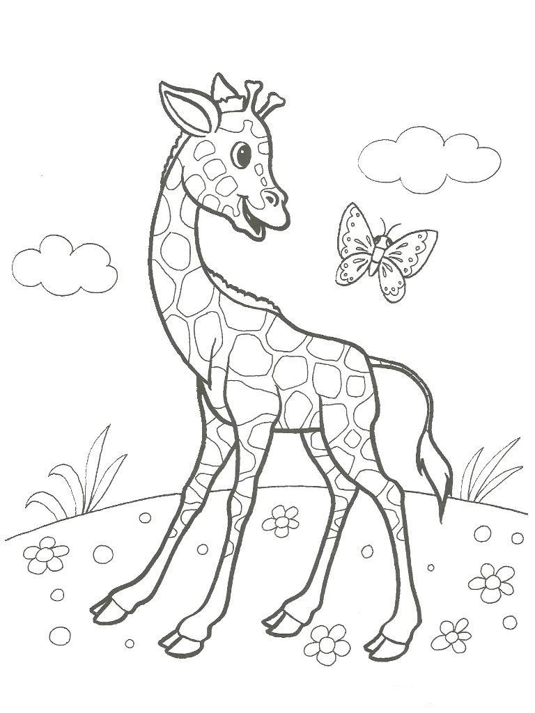 Раскраска жирафик 4