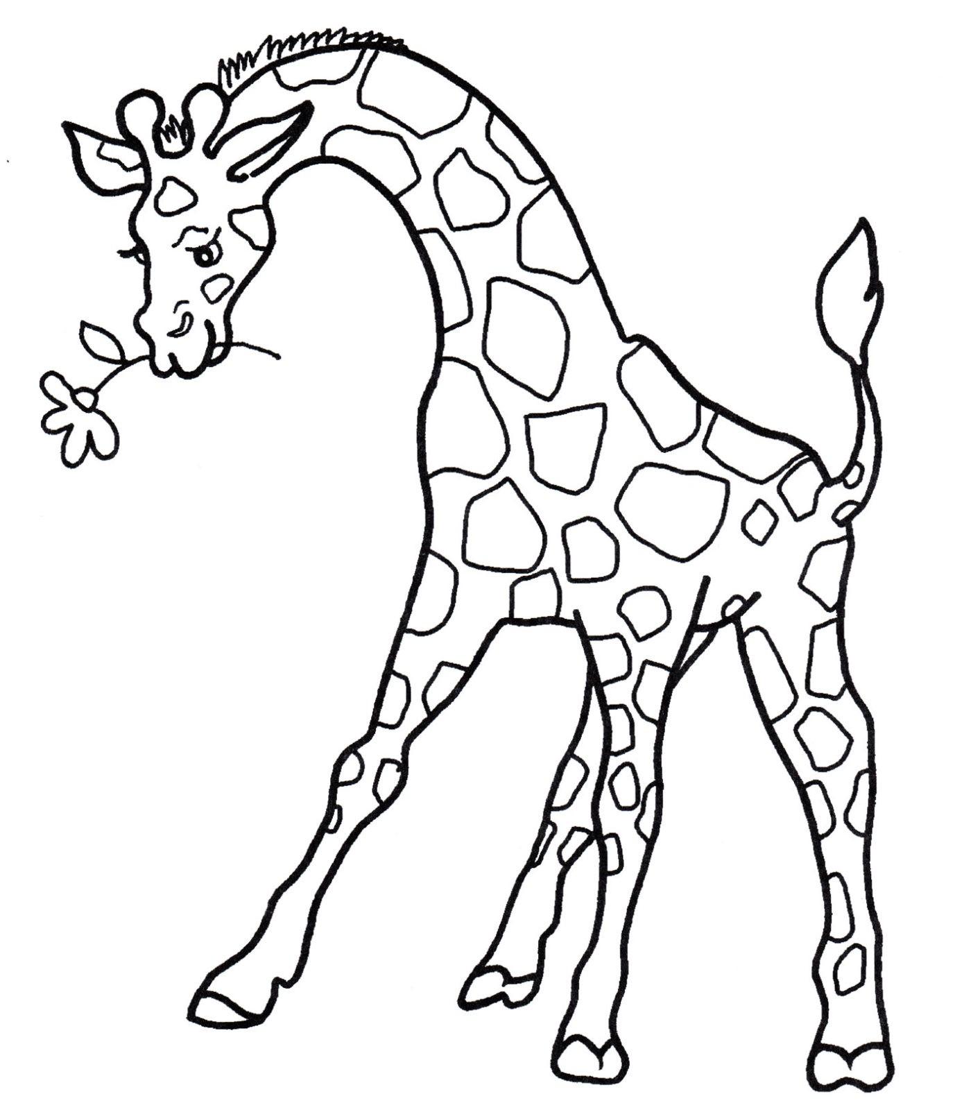 Раскраска жираф 23