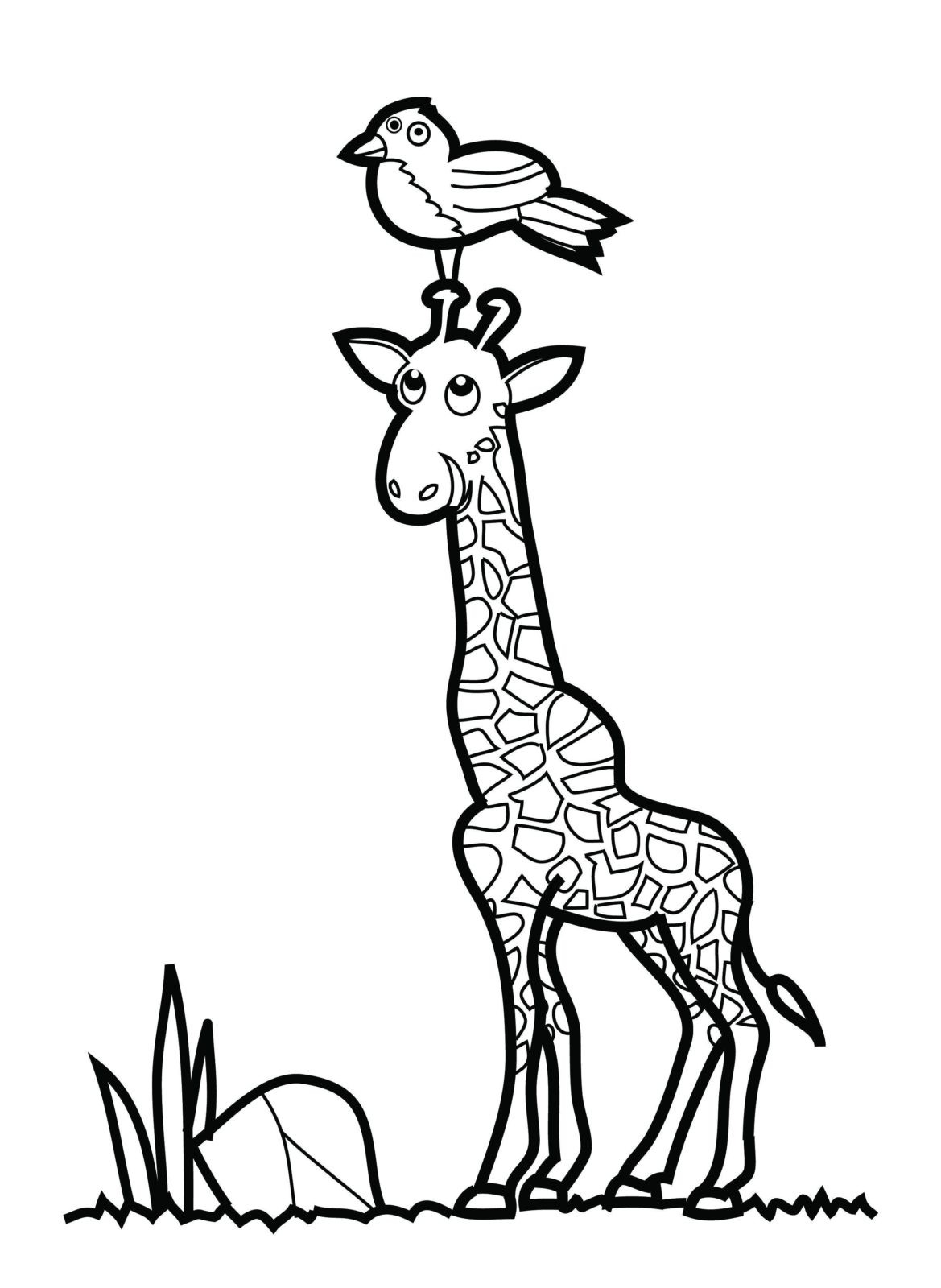 Раскраска жираф 21