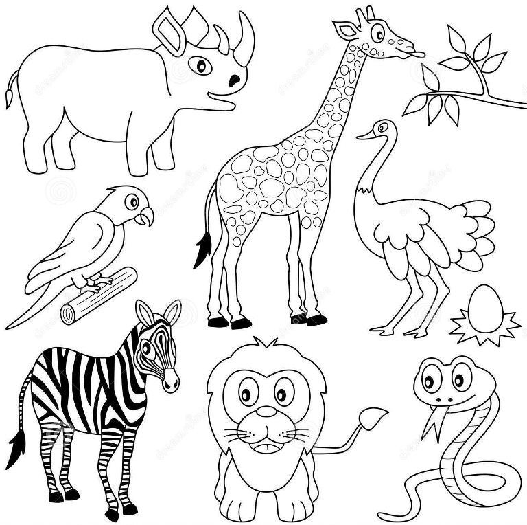 Раскраска жираф 20
