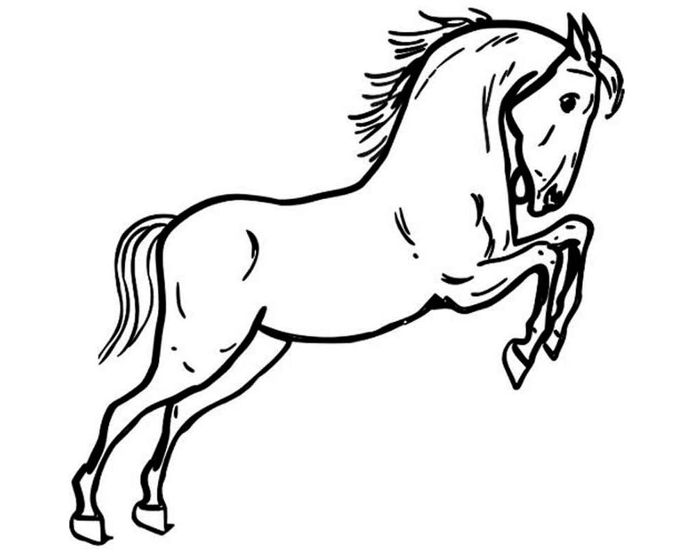 Раскраска конь 58
