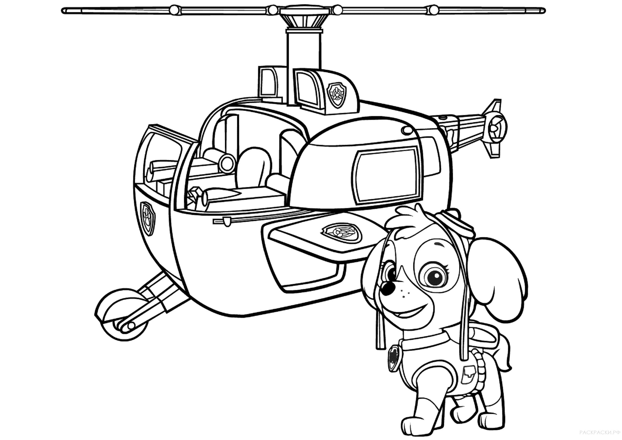 Скай у вертолёта