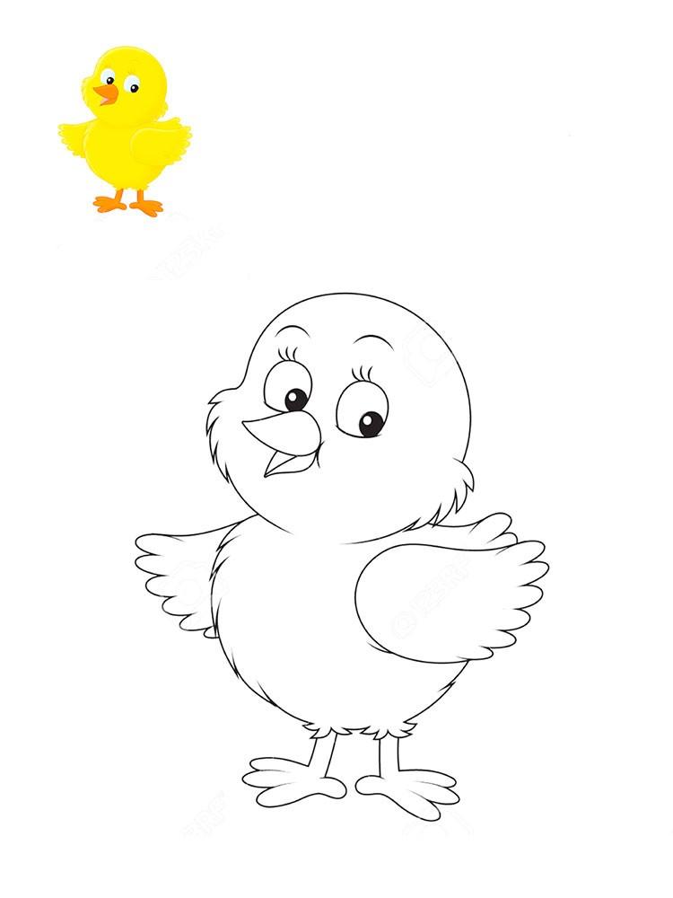 раскраска цыплёнок 30