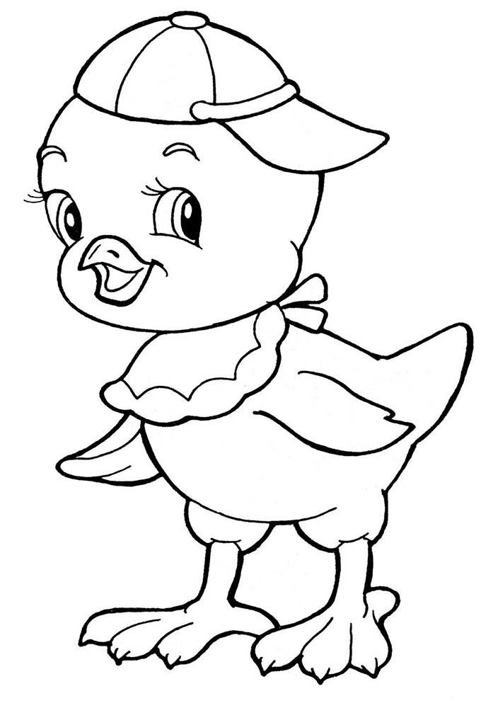 Раскраска цыплёнок 44