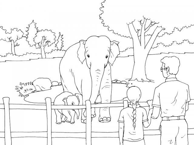 раскраска слон 19