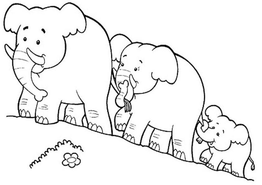 раскраска слоны