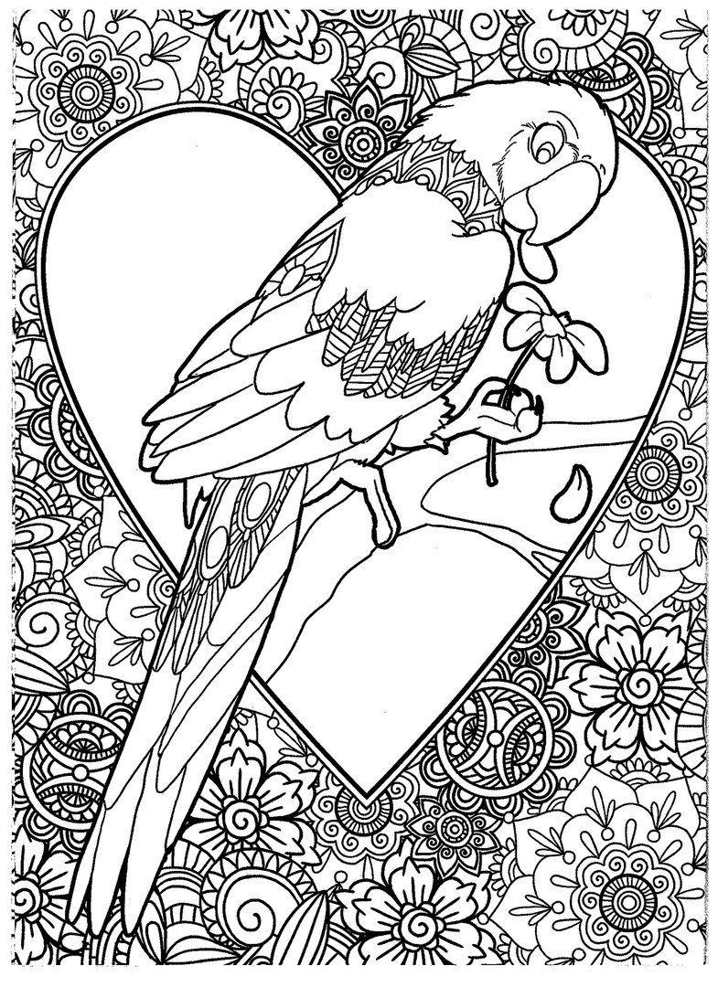 Раскраска попугай антистресс