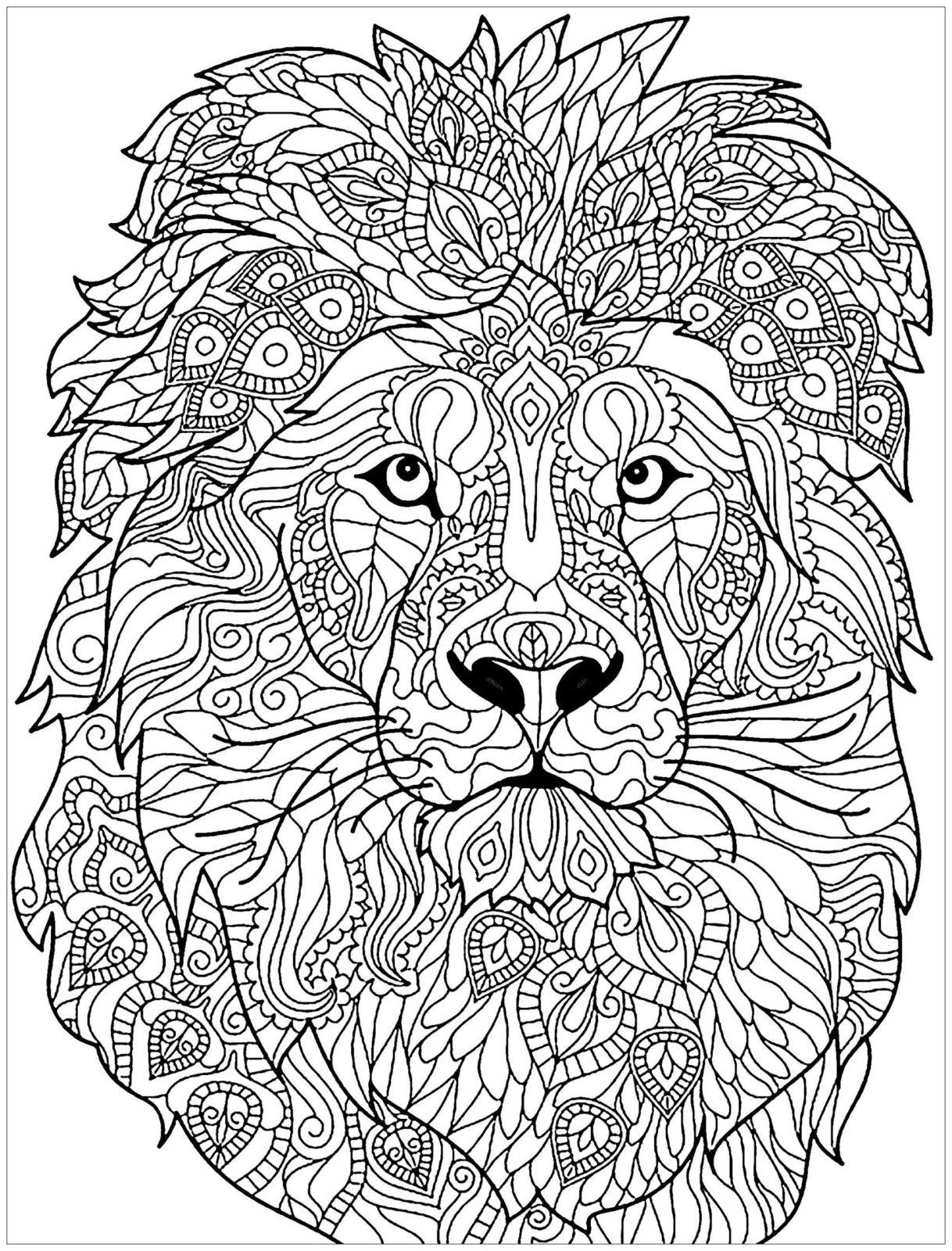раскраска лев антистресс 2
