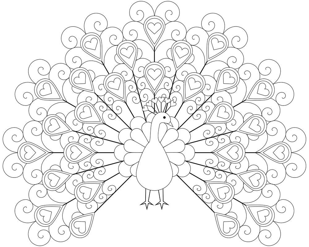 Раскраска павлин 42