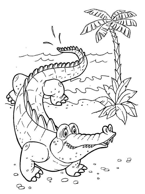 Раскраска крокодил 46