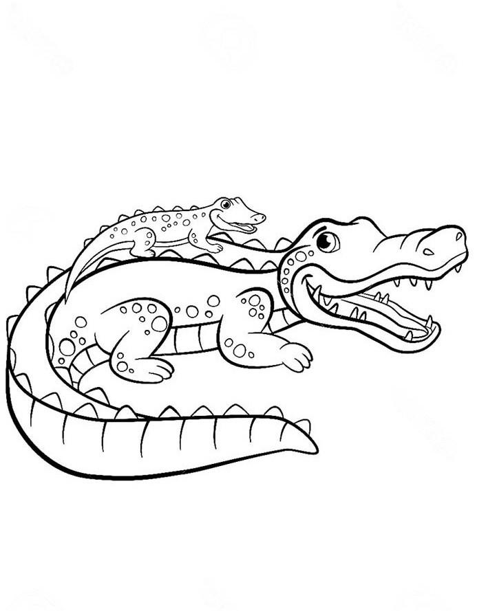 раскраска крокодил 3