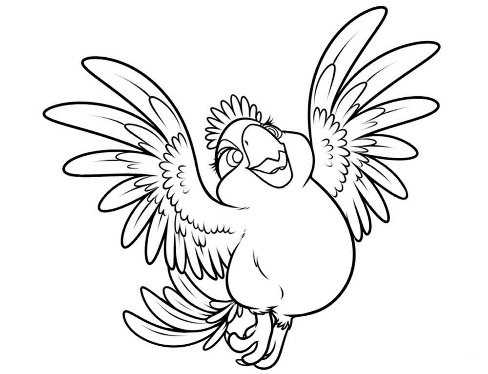 попугай Рио 4