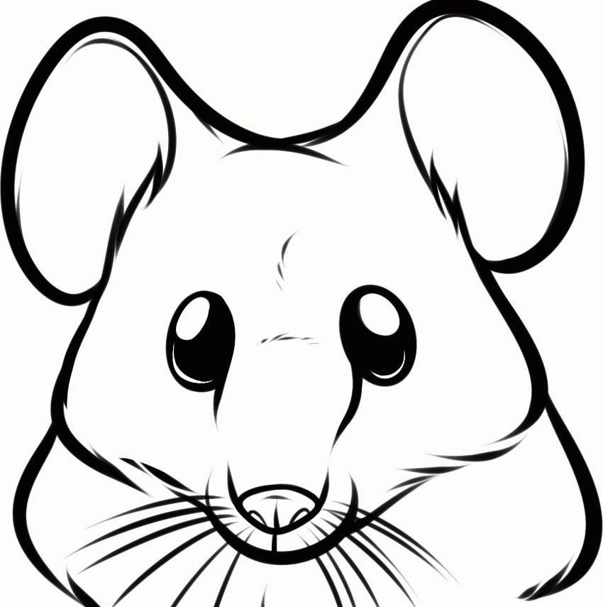 раскраска мышка 10