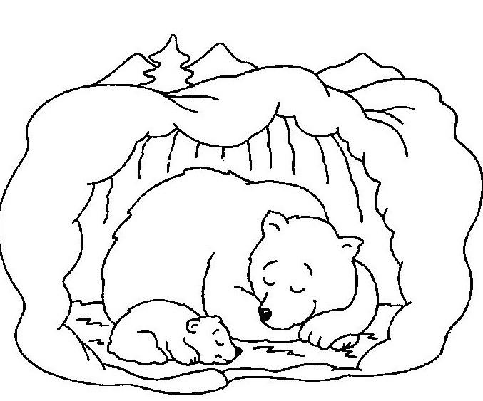 Медведица с медвежонком 4