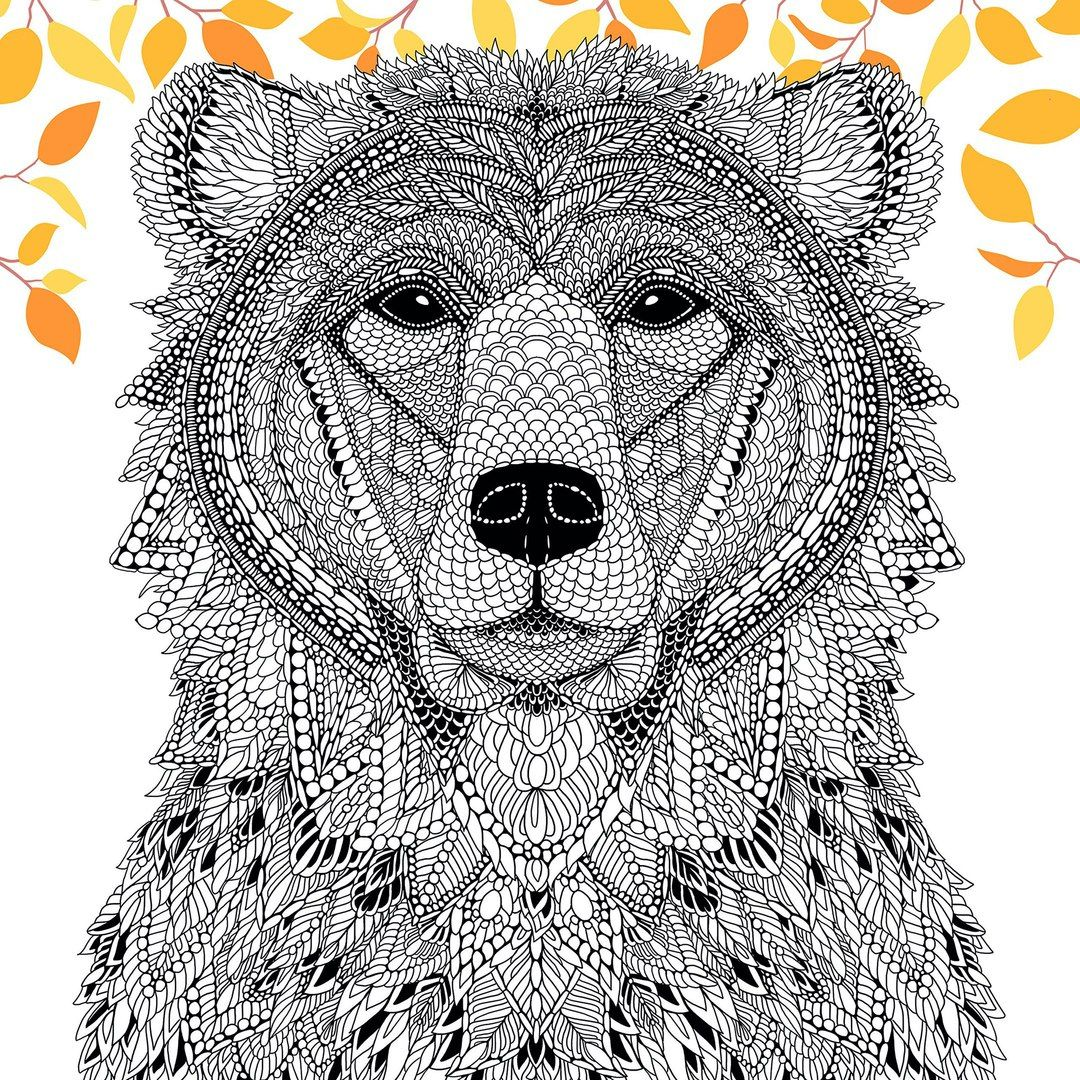 Раскраска медведь антистресс