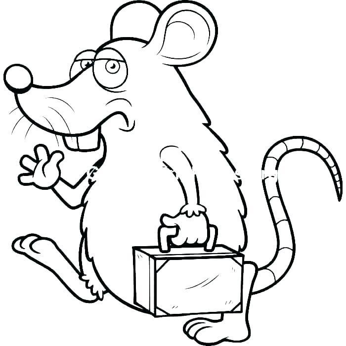 Крыса с чемоданом