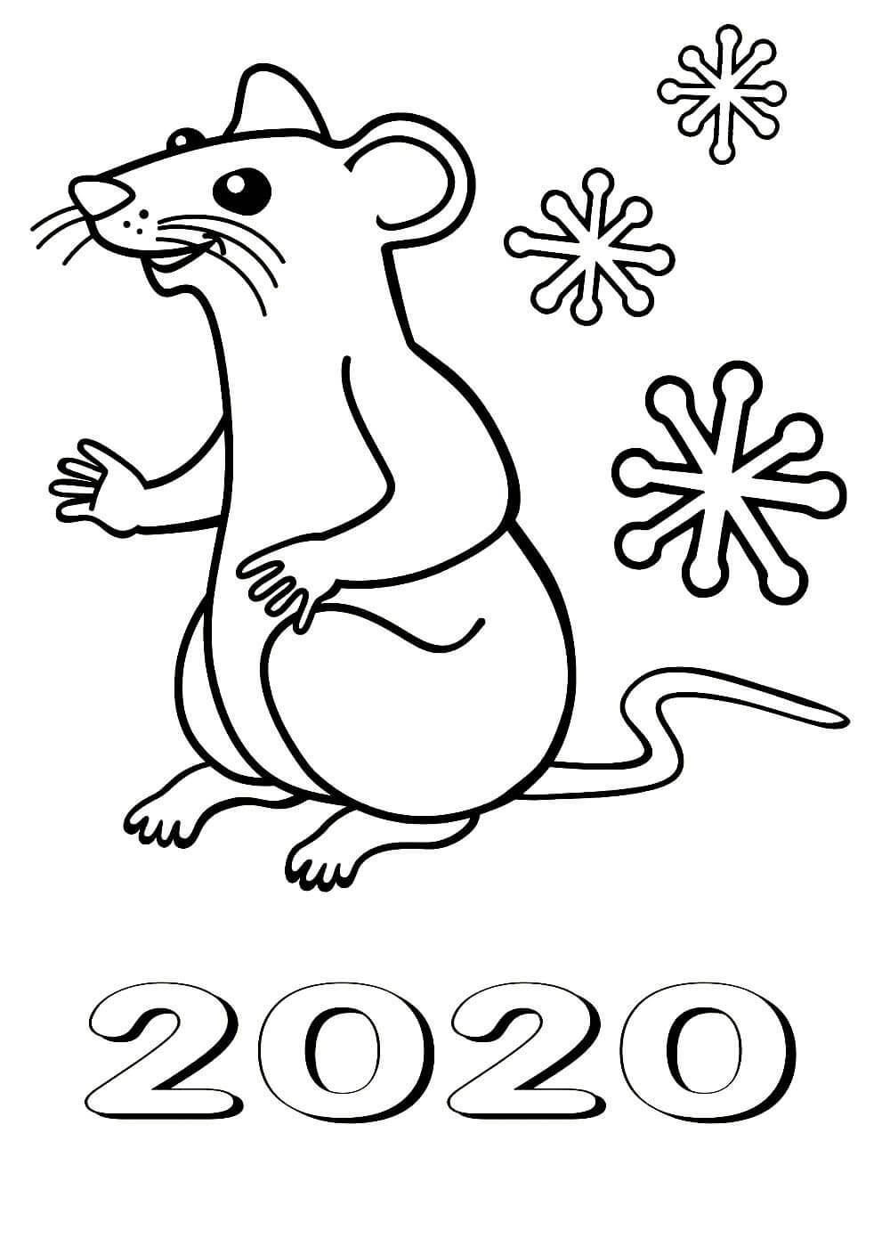раскраска крыса 5