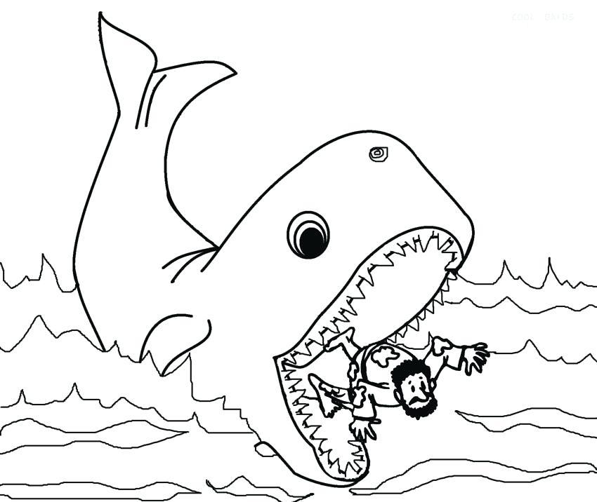 раскраска кит 4