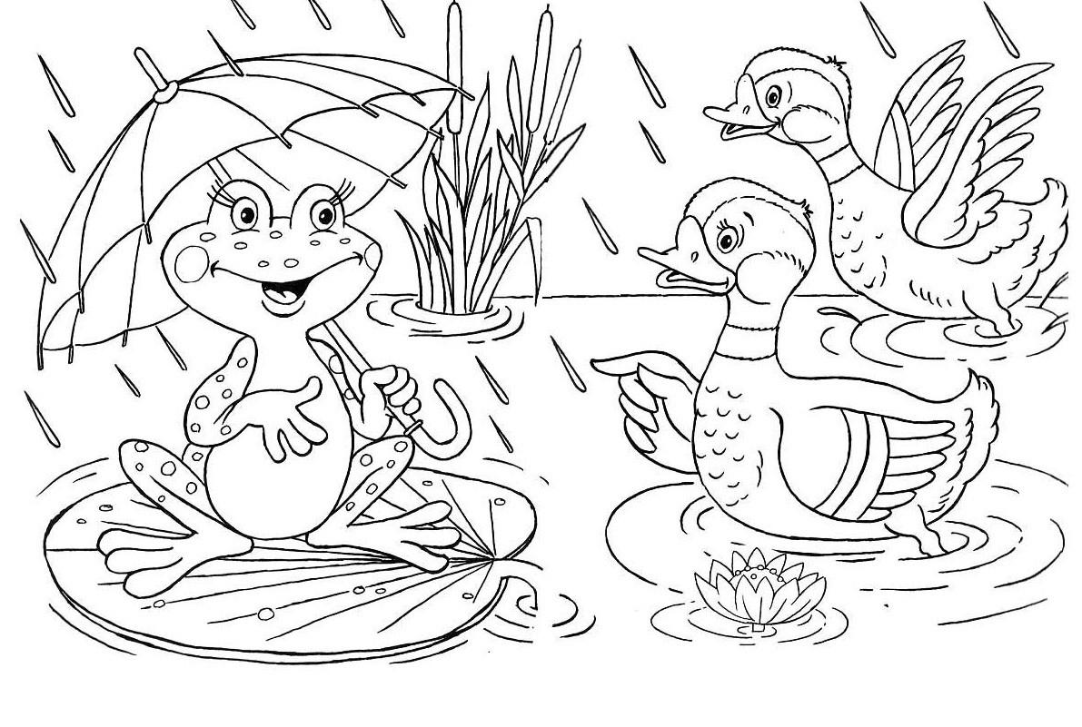 Раскраска лягушка 10