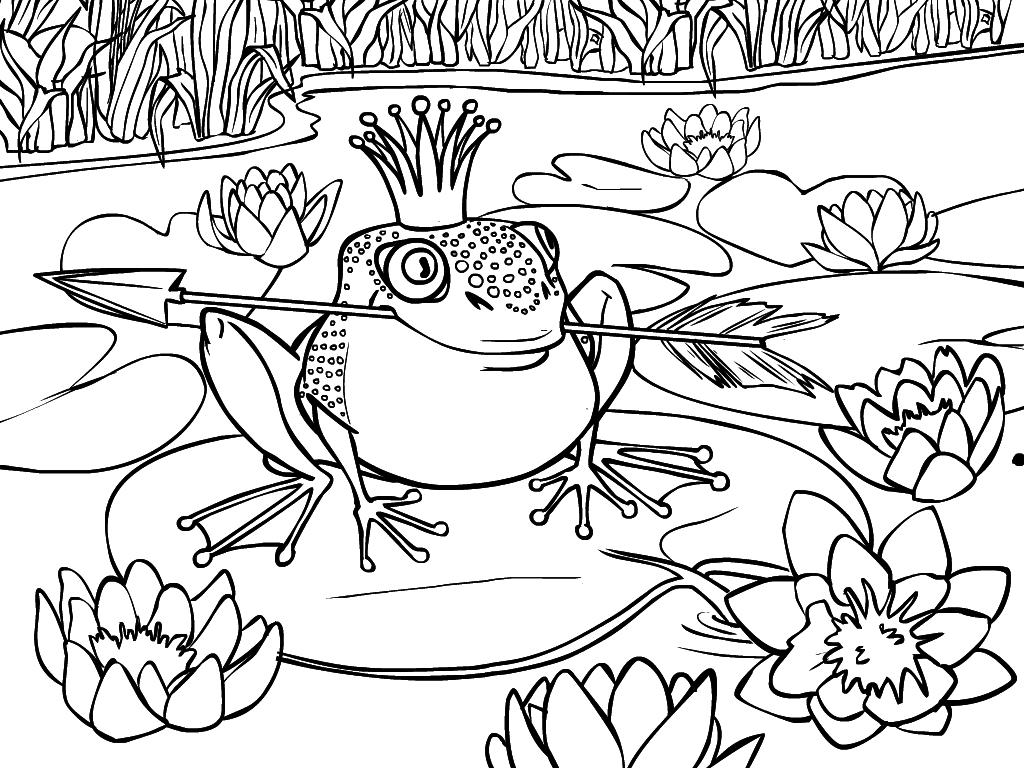 раскраска лягушка царевна 17