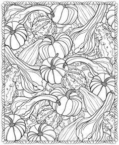 Осенний урожай 3