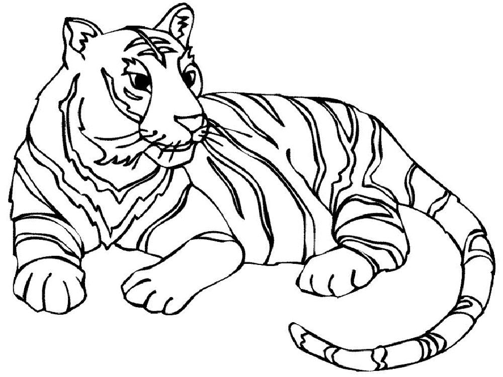 раскраска тигр 11
