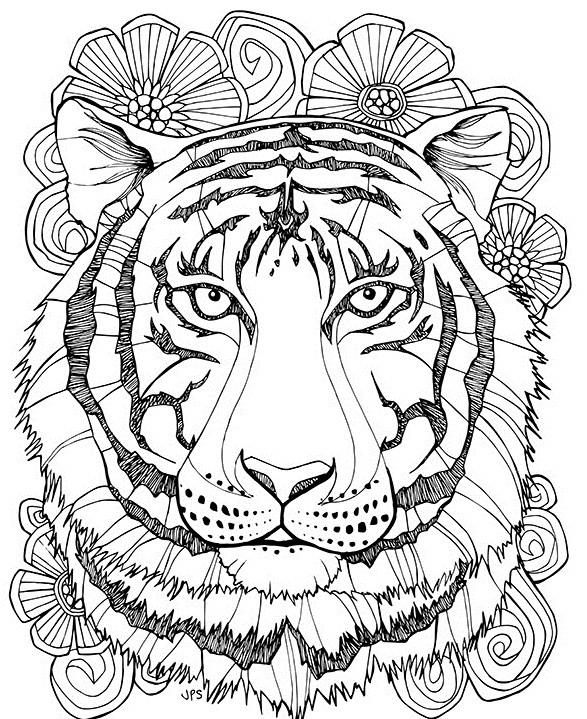 раскраска тигр антистресс