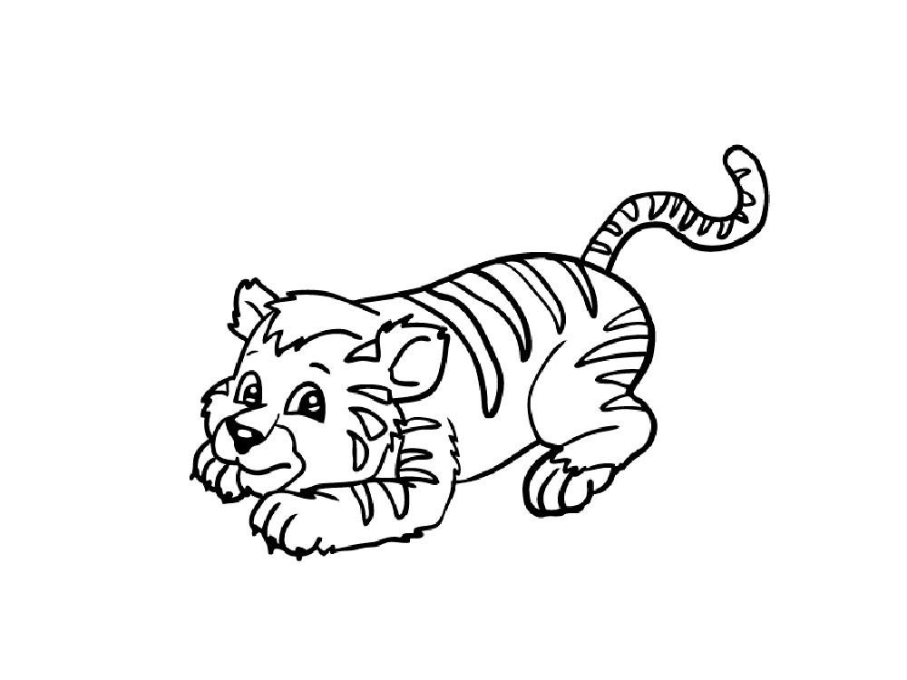 тигрёнок смешной
