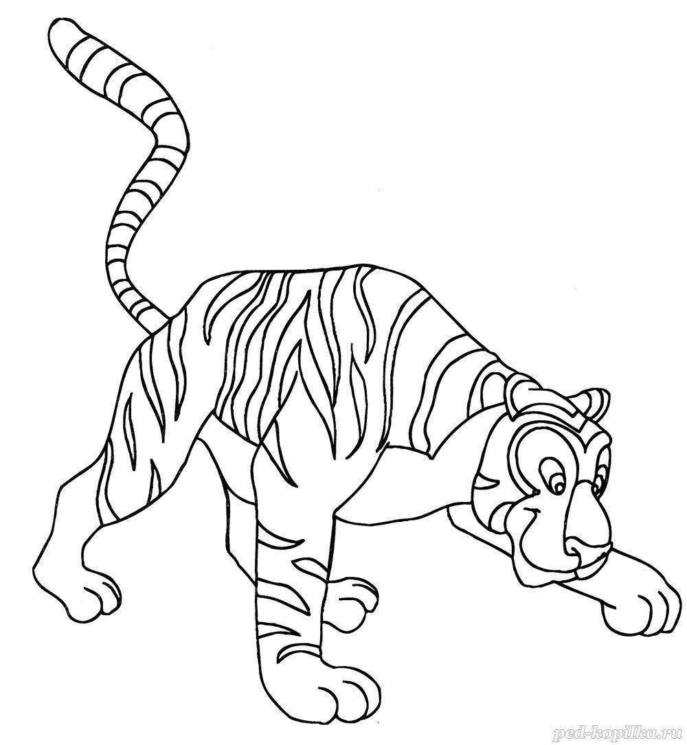 раскраска тигр 46