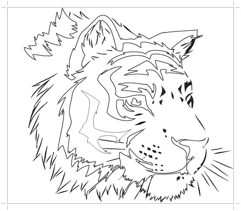 Голова тигра 2