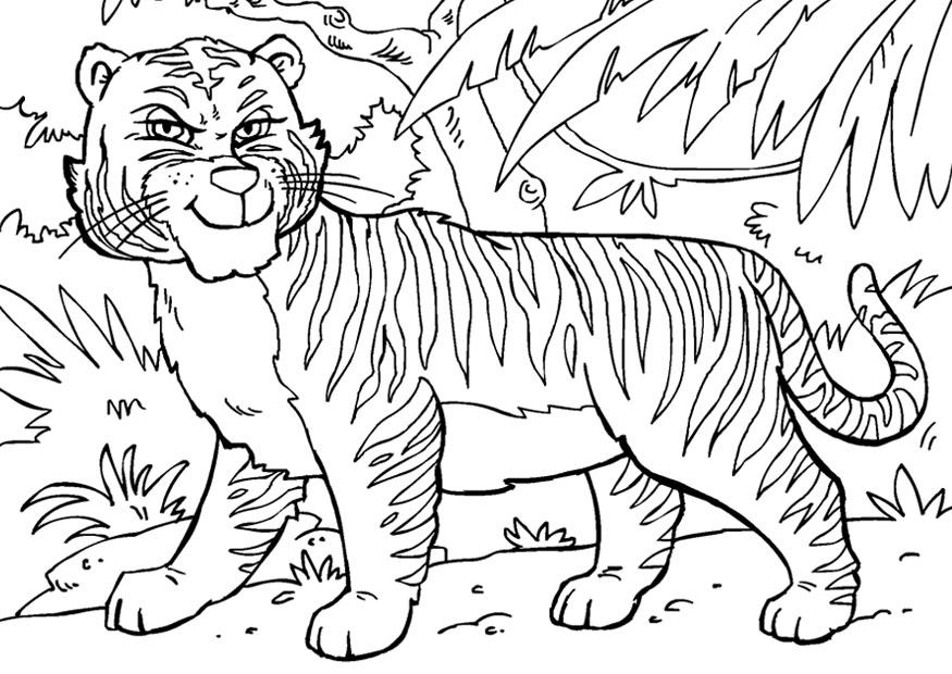 раскраска тигрёнок 11