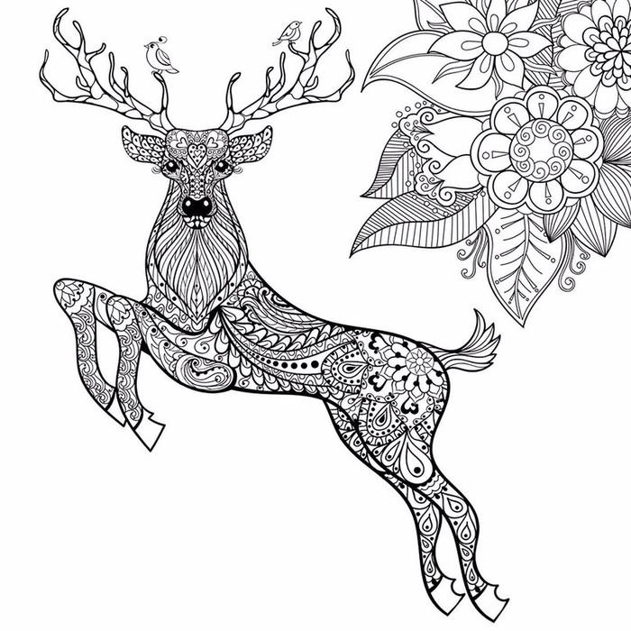 Раскраска олень антистресс 5