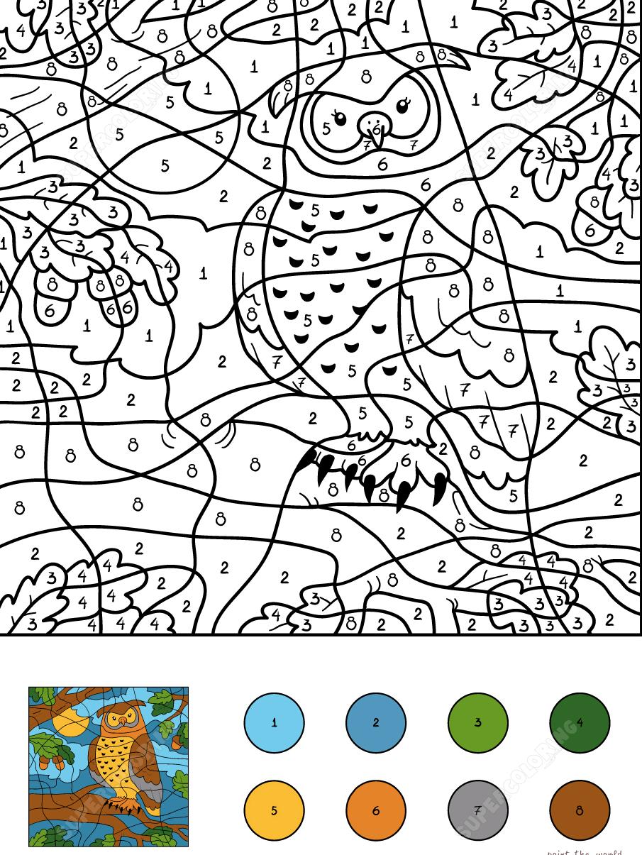 раскраска сова по номерам 7