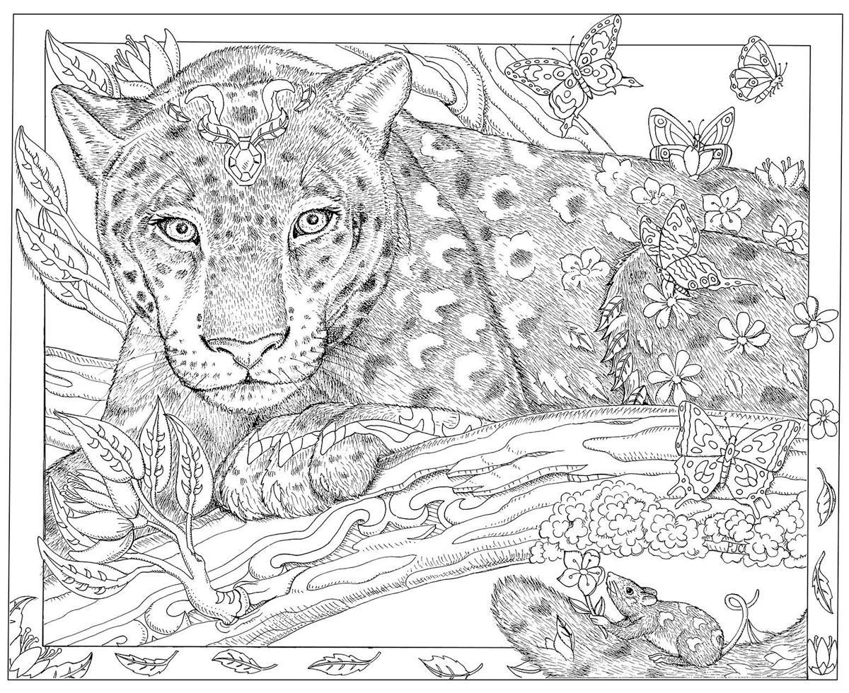 Леопард антистресс