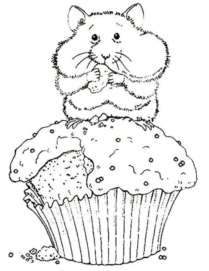 хомяк ест кекс