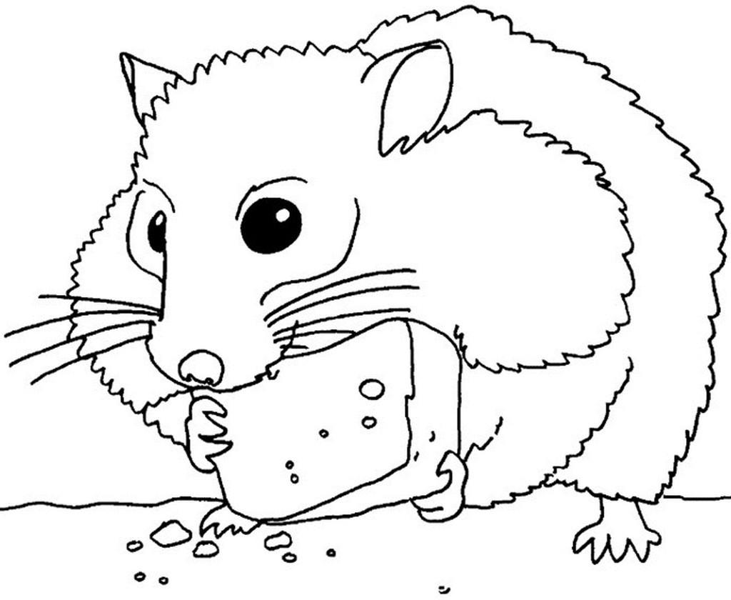 хомяк с сыром