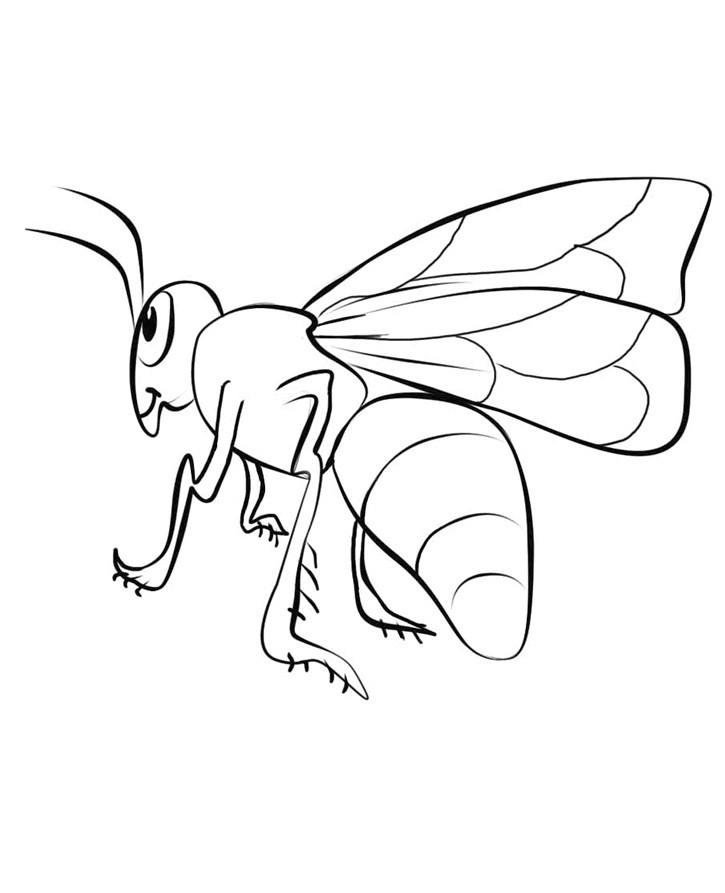 раскраска пчела 11