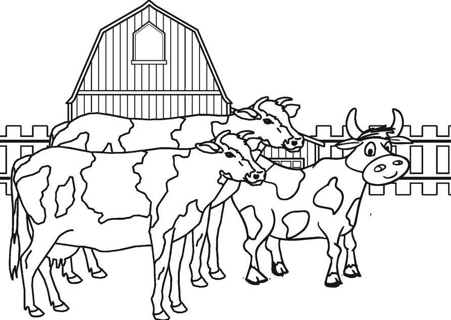 Две коровы и бычок