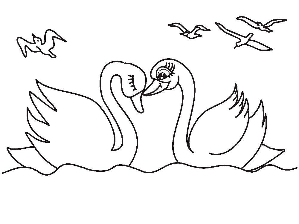 лебеди целуются