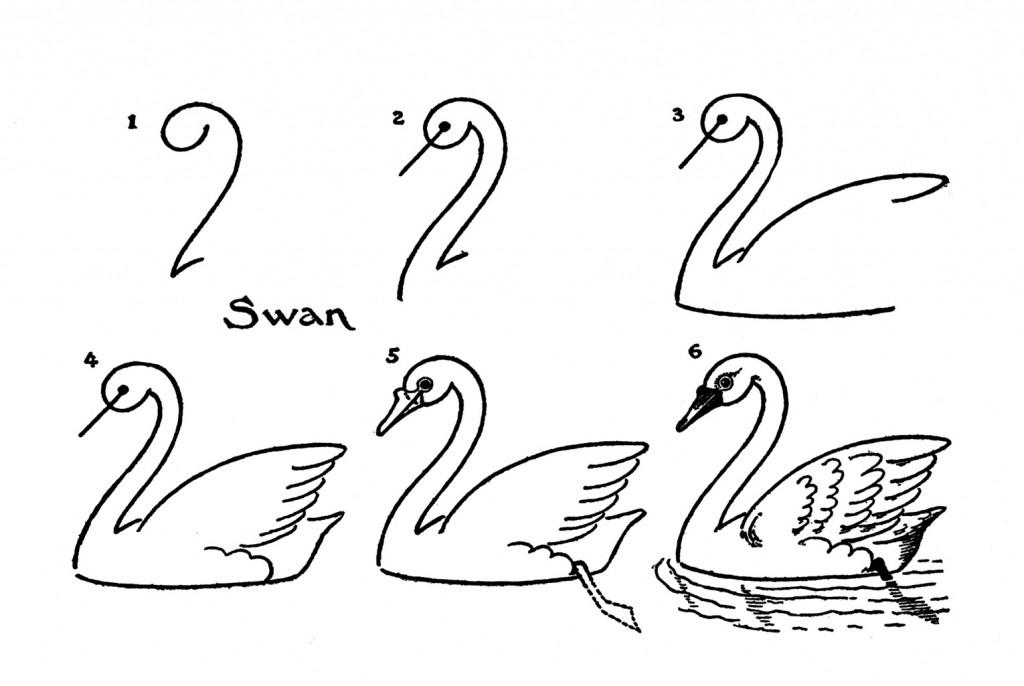 лебедь поэтапно