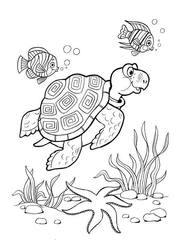 раскраска черепаха морская