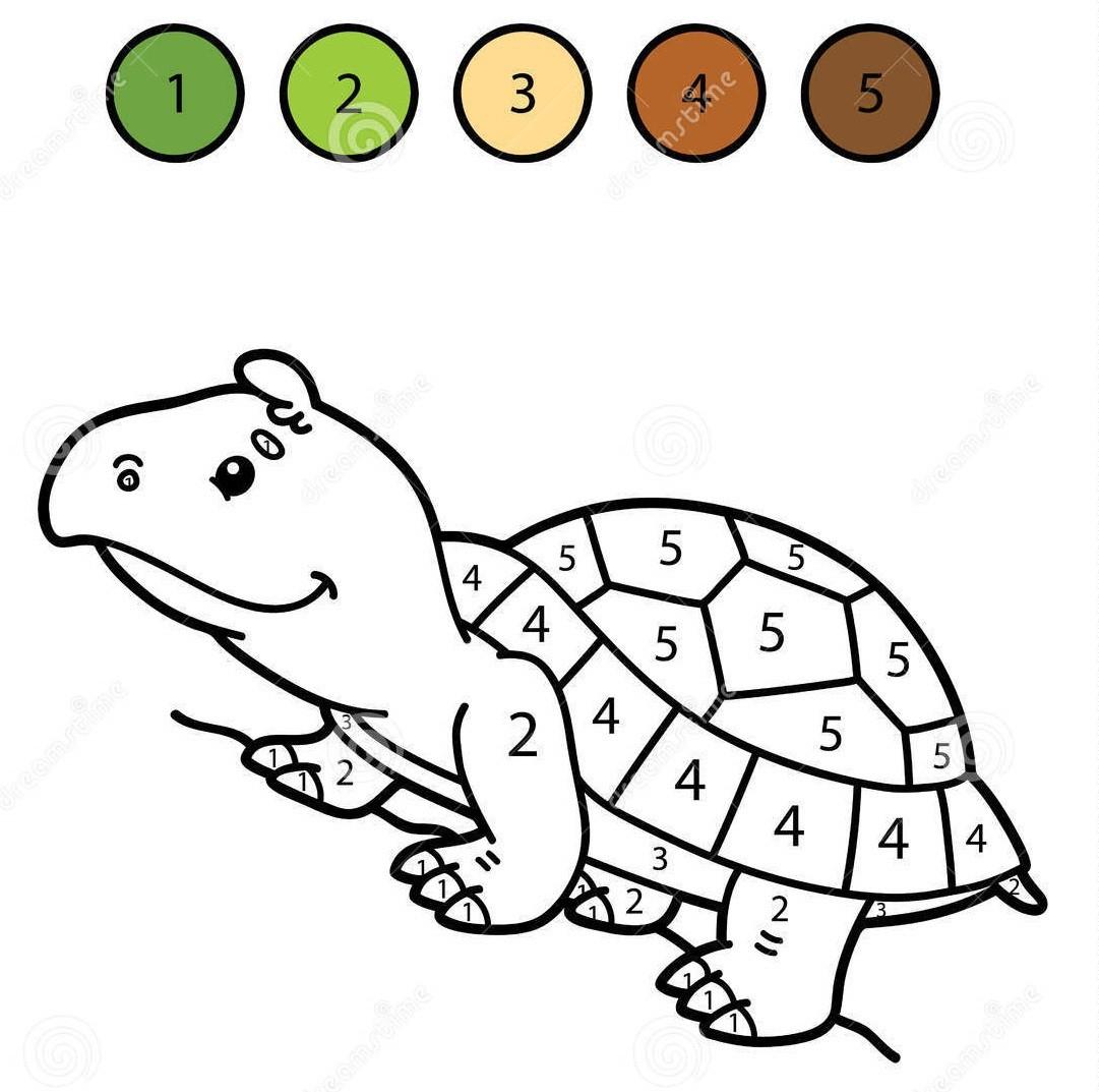 Раскраска черепаха 25