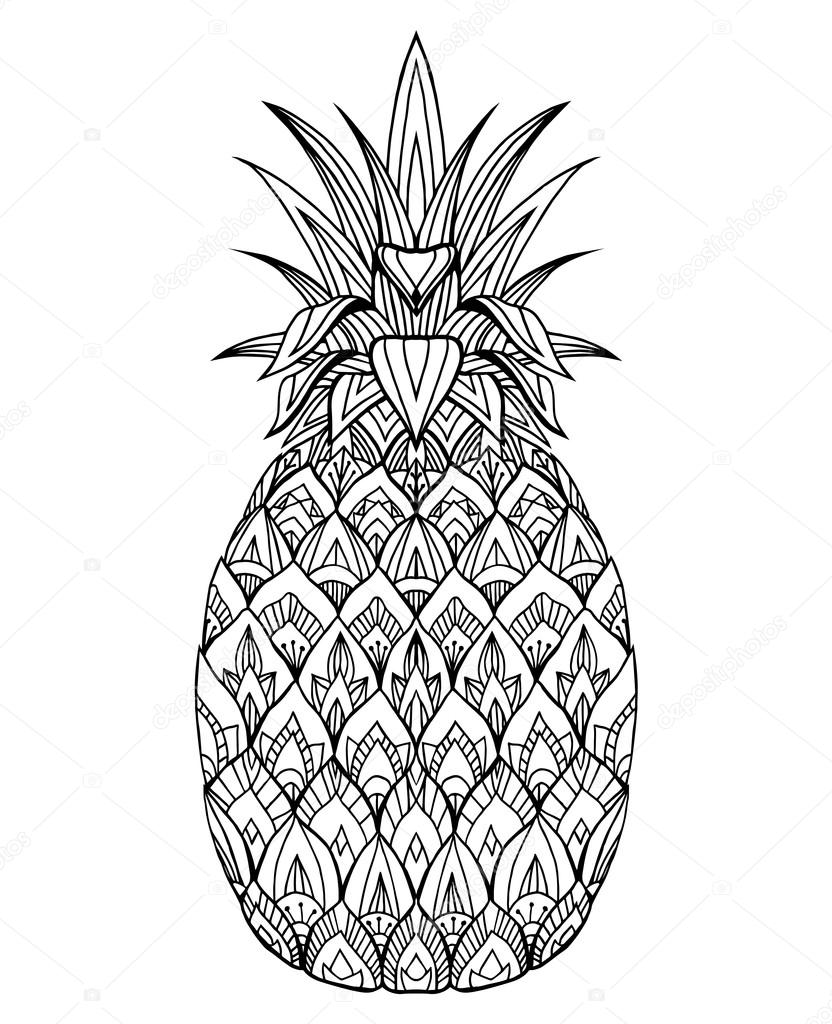 раскраска ананас 17