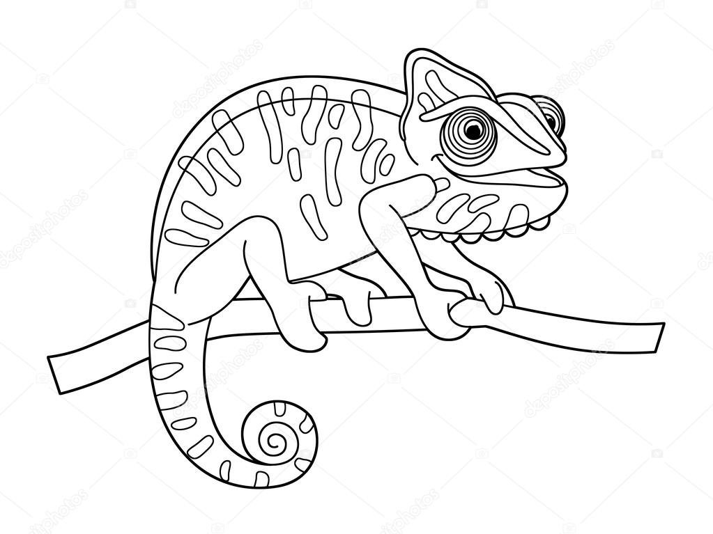 Раскраска ящерица 8