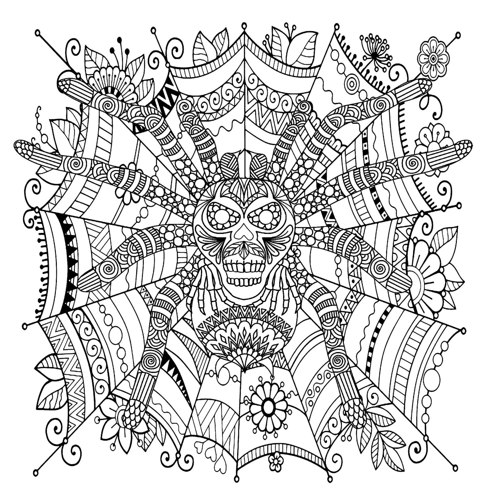 Раскраска паук | andrey-eltsov.ru