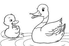Раскраска утка 12