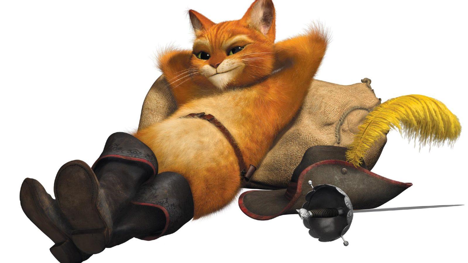 Кот герой