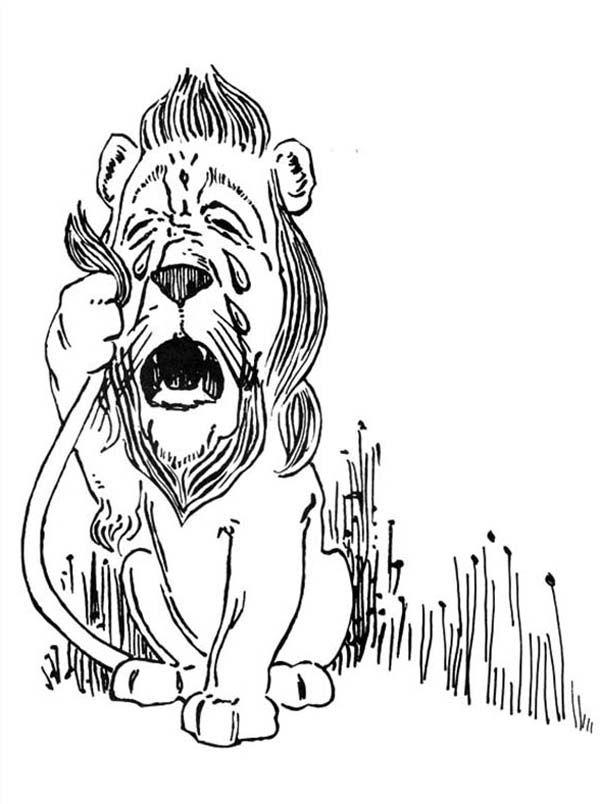 Трусливый Лев фото