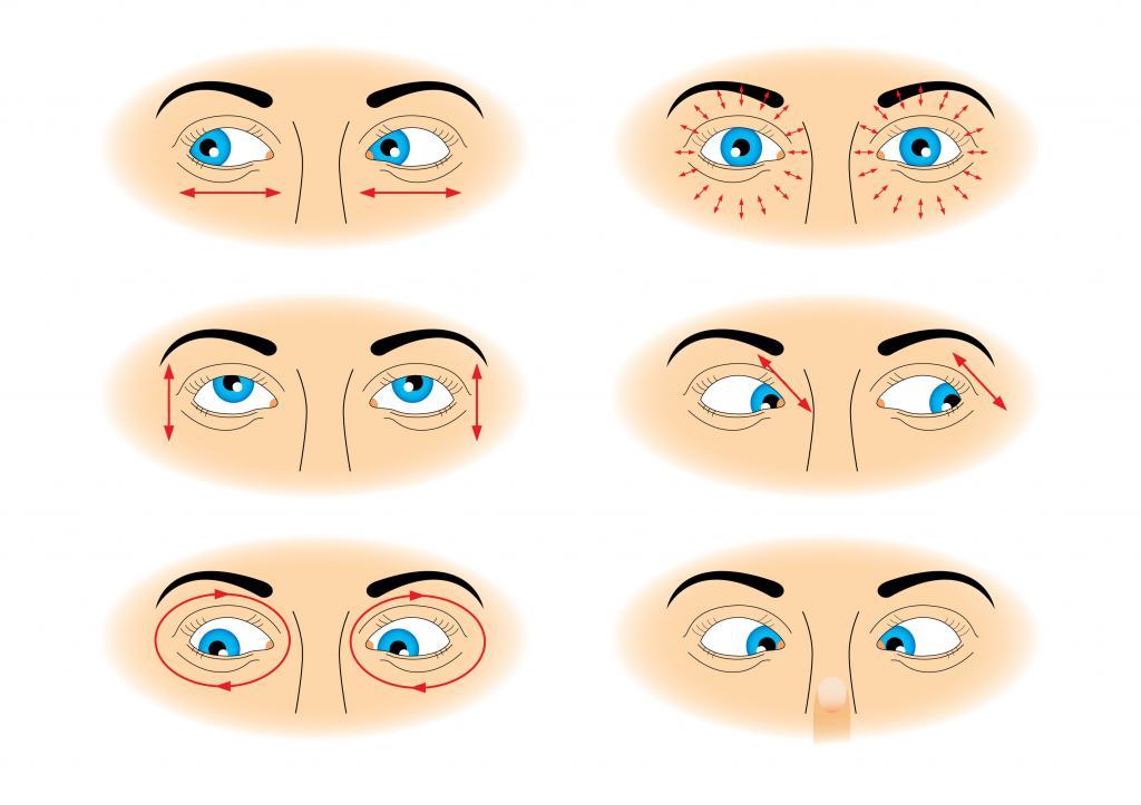 упражнения на мышцы глаз фото