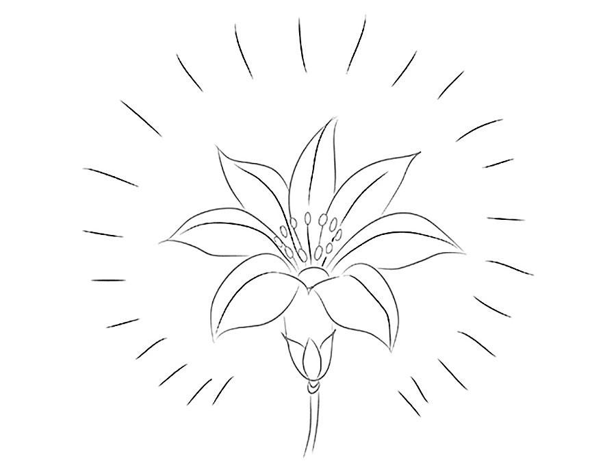 Цветик семицветик фото